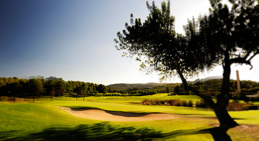 discover the best golf courses during your stay at the saratoga hotel in Palma